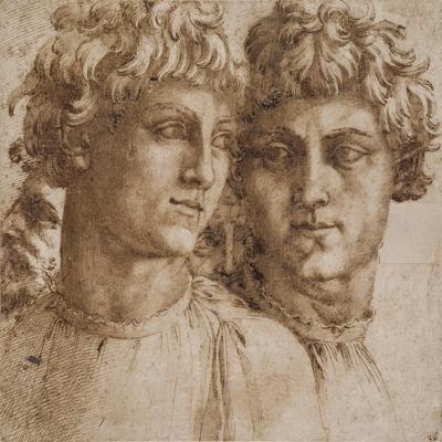 Two Studies of the Head of a Youth, C.1550