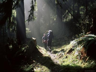 Backpackers in Steamy Light, Queets Vall, Olympic National Park, Washington State, USA-Aaron McCoy-Photographic Print