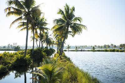 Backwaters Near North Paravoor, Kerala, India, South Asia-Ben Pipe-Photographic Print