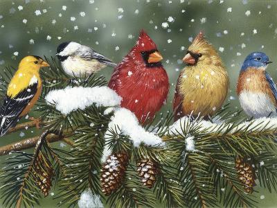 Backyard Birds on Snowy Branch-William Vanderdasson-Giclee Print