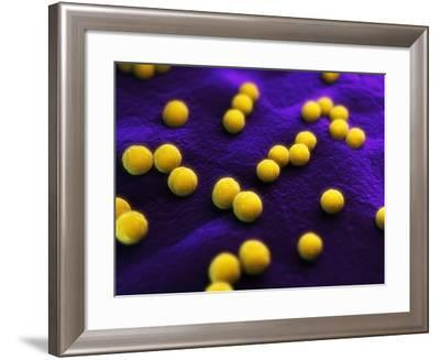 Bacteria, Conceptual Artwork-SCIEPRO-Framed Photographic Print