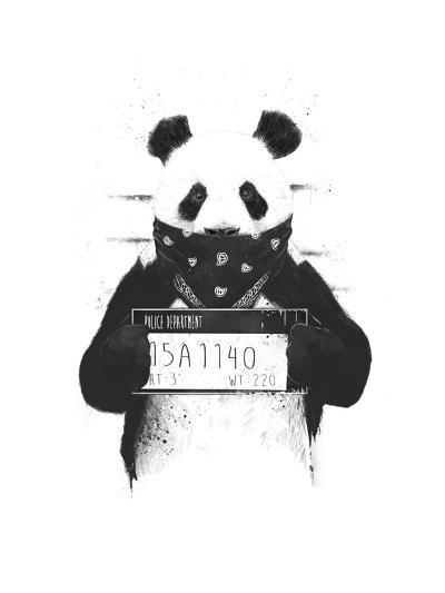 Bad Panda-Balazs Solti-Giclee Print
