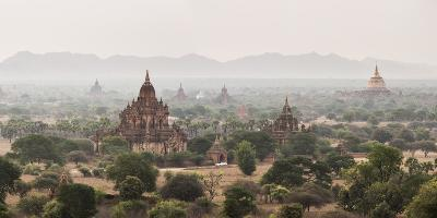 Bagan (Pagan) Buddhist Temples and Ancient City, Myanmar (Burma), Asia-Matthew Williams-Ellis-Photographic Print