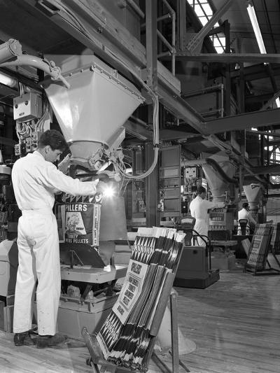 Bags Being Filled at the Spillers Animal Foods Plant, Gainsborough, Lincolnshire, 1962-Michael Walters-Photographic Print