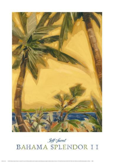 Bahama Splendor II-Jeff Surret-Art Print