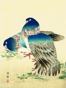 Blue Pigeons by Bairei Kono