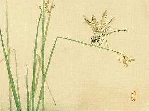 Dragonfly by Bairei Kono