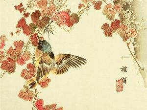Flowers and Birds Picture Album by Bairei No.10 by Bairei Kono