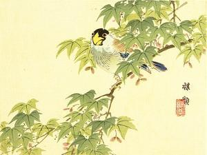 Flowers and Birds Picture Album by Bairei No.4 by Bairei Kono