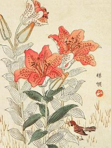 Sparrow and Tiger Lilies by Bairei Kono