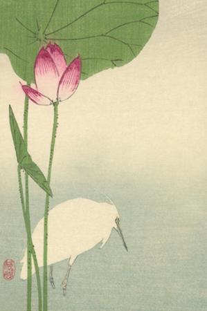 White Heron and Lotus by Baison