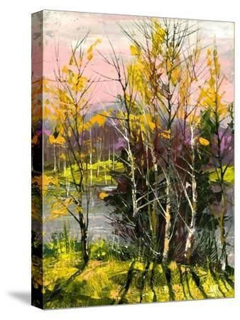 Trees And Bushes On The Bank Of The River