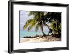 Bangaram Beach, Lakshadweep Islands, India, Indian Ocean, Asia by Balan Madhavan
