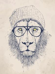 Cool Lion by Balazs Solti