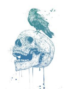 New Skull (Blue) by Balazs Solti