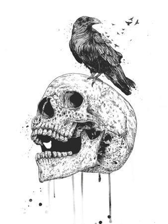 New Skull by Balazs Solti