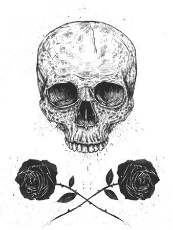 Skull N Roses by Balazs Solti