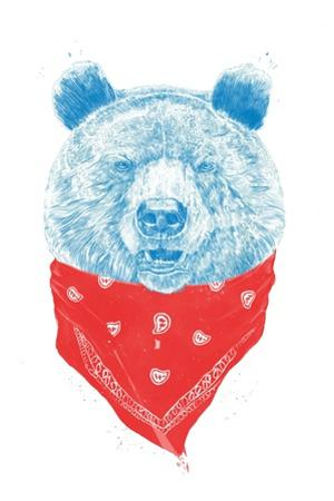 Wild Bear by Balazs Solti