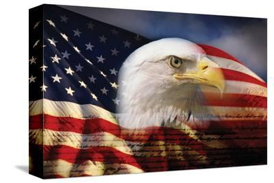 Bald Eagle and American Flag--Stretched Canvas Print
