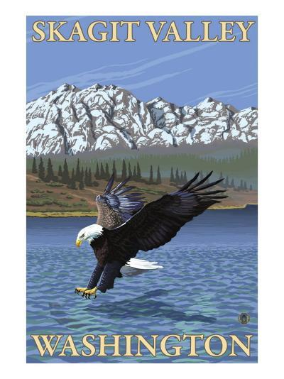 Bald Eagle Diving, Skagit Valley, Washington-Lantern Press-Art Print