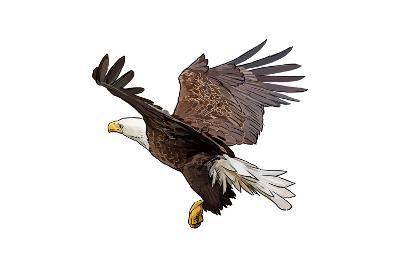 Bald Eagle Landing - Icon-Lantern Press-Art Print