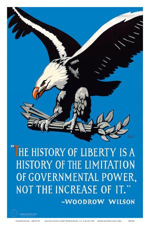 https://imgc.artprintimages.com/img/print/bald-eagle-the-history-of-liberty-woodrow-wilson_u-l-f686jx0.jpg?p=0