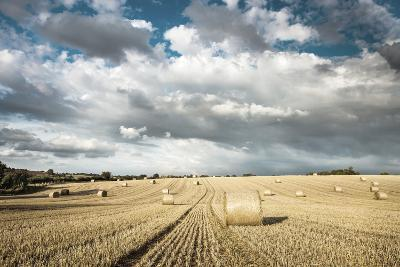 Baled Field, Gloucestershire, England, United Kingdom, Europe-John Alexander-Photographic Print
