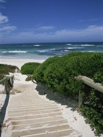 https://imgc.artprintimages.com/img/print/bales-beach-seal-bay-conservation-park-kangaroo-island-south-australia-australia-pacific_u-l-p6p9hx0.jpg?p=0