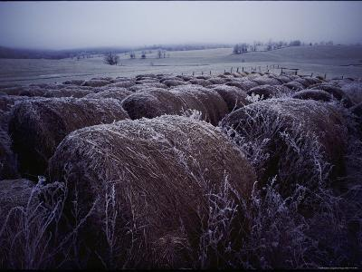 Bales of Hay Covered with Morning Frost-Kenneth Garrett-Photographic Print