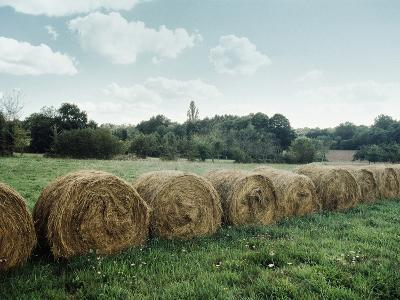Bales of Hay in a Field--Photographic Print