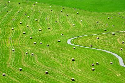 Bales of Hay on Meadow. Aerial View on Summer Landscape.- Peteri-Photographic Print