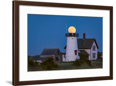 Ball Head-Michael Blanchette Photography-Framed Photographic Print