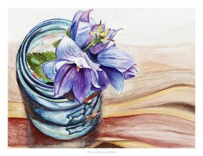 Ball Jar Flower IV-Redstreake-Giclee Print