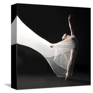 Ballet Dancer Jump White Veil