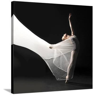 Ballet Dancer Jump White Veil--Stretched Canvas Print