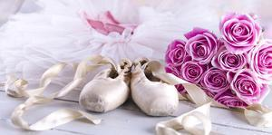 Ballet Dress with Shoes & Roses