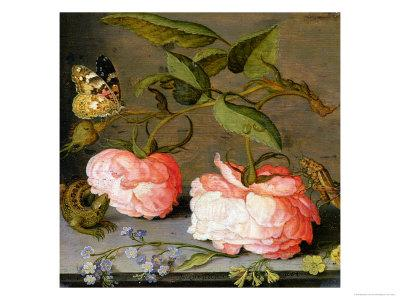 A Still Life with Roses on a Ledge