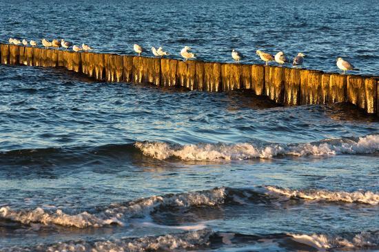 Baltic Sea-Catharina Lux-Photographic Print