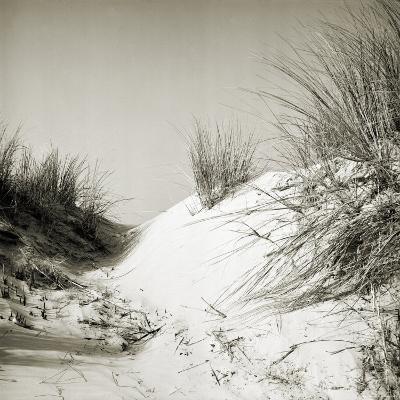 Baltrum Beach, no. 10-Katrin Adam-Photographic Print