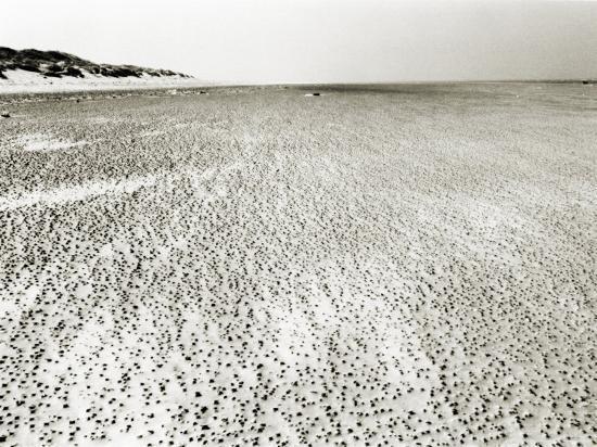 Baltrum Beach, no. 6-Katrin Adam-Photographic Print
