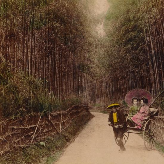 'Bamboo Avenue, Kyoto, Japan', 1896-Unknown-Photographic Print
