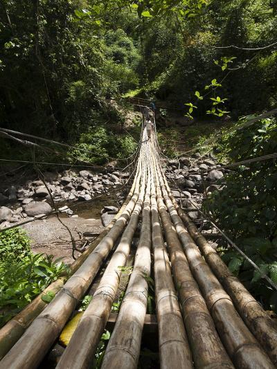 Bamboo Bridge at Dark View Falls, St. Vincent and the Grenadines, Windward Islands-Michael DeFreitas-Photographic Print