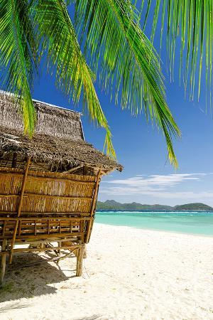bamboo-hut-on-a-tropical-beach