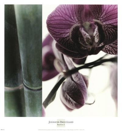 https://imgc.artprintimages.com/img/print/bamboo-i-flower-i_u-l-f8r4i10.jpg?p=0