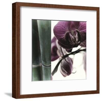 Bamboo I (Flower I)-Jennifer Broussard-Framed Art Print