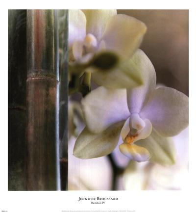 https://imgc.artprintimages.com/img/print/bamboo-iv_u-l-f8p8420.jpg?p=0