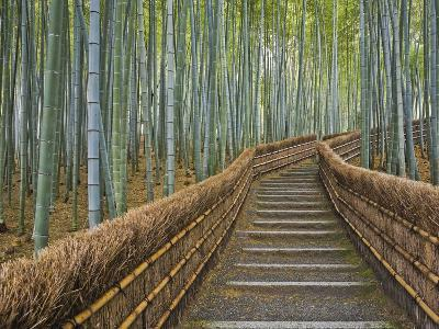 Bamboo Lined Path at Adashino Nembutsu-ji Temple-Rudy Sulgan-Photographic Print