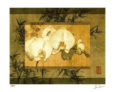 Bamboo & Orchids II-Ives Mccoll-Giclee Print