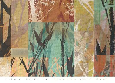 Bamboo Sections-John Butler-Art Print