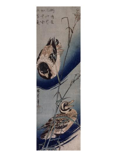 Bambous et Canards Sauvages-Ando Hiroshige-Giclee Print